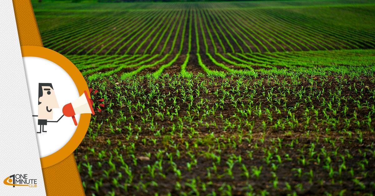 Agrifood Innovation: al via il bando per le Startup agroalimentari
