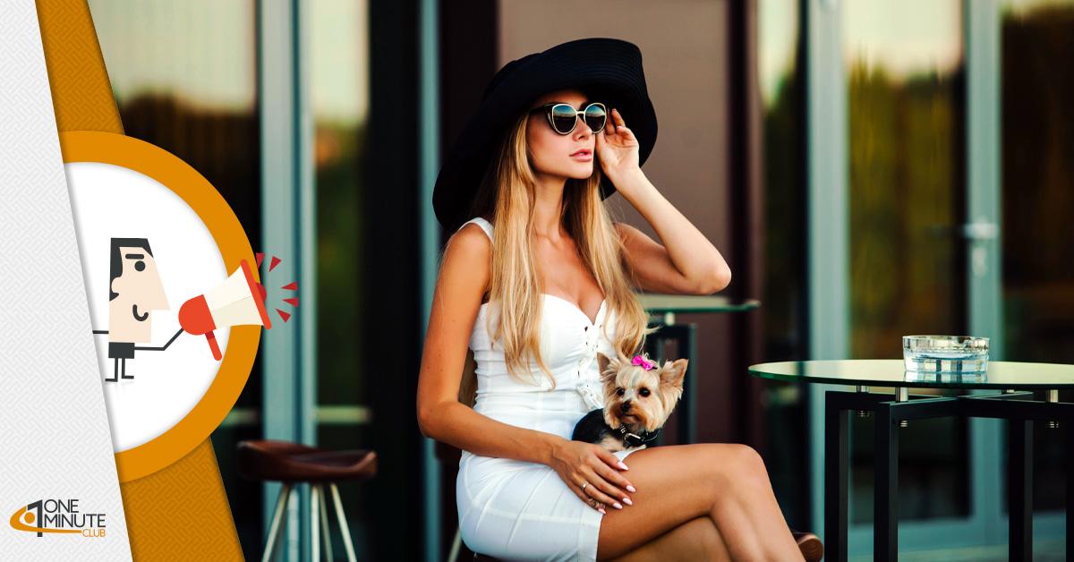 Idee di business: arrivano cafè e pasticcerie per cani